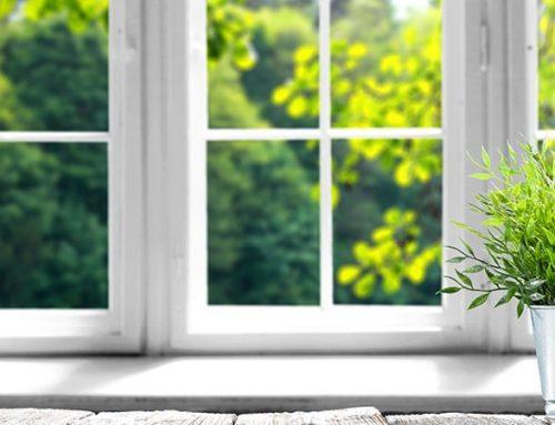 Clean Window Wells